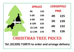 christmas tree prices