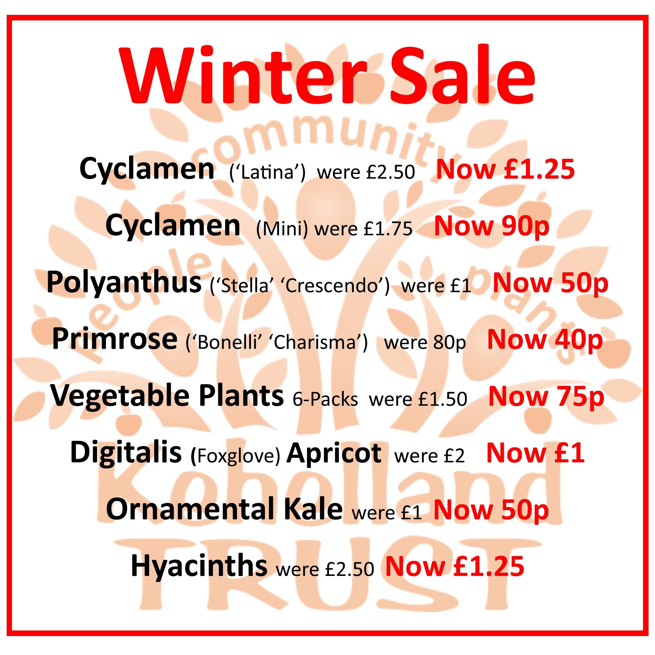 PLANTS: Winter Sale