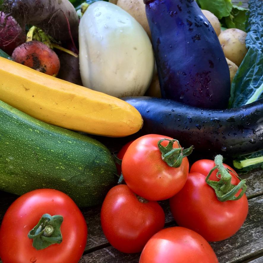 COMMUNITY: Food Hub Futures